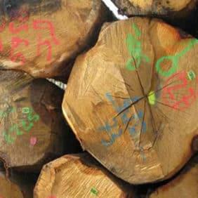 Marcación y señalización forestal